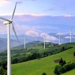Polska będzie stawiać na odnawialne źródła energii. PGE już inwestuje w fotowoltaikę i farmy wiatrowe na Bałtyku