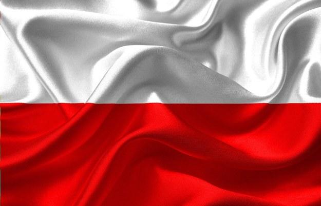 Polska Biało-Czerwona /foto. pixabay /