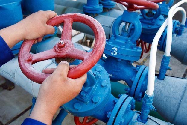 Polska chce budować sieć przesyłu gazu /AFP