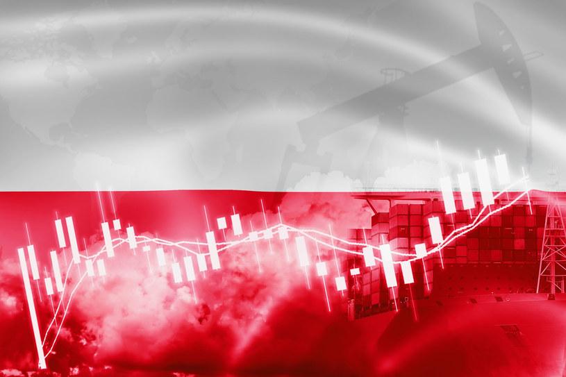 Polska gospodarka: silne odbicie po płytkiej recesji. /123RF/PICSEL