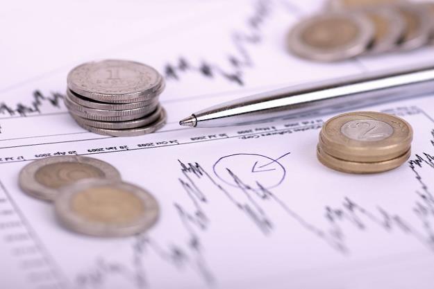 Polska gospodarka wciąż pozostaje na ścieżce wzrostu /©123RF/PICSEL