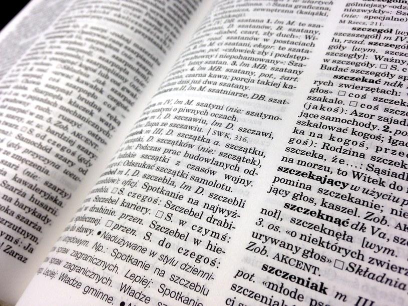 Polska gramatyka i wymowa mogą sprawiać trudności obcokrajowcom, zdj. ilustracyjne /INTERIA.PL