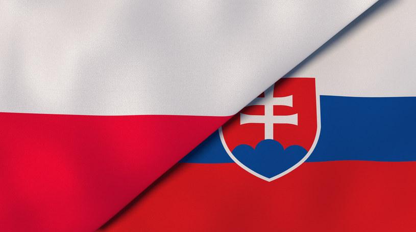 Polska i Słowacja podpiszą porozumienie dotyczące współpracy podatkowej /123RF/PICSEL