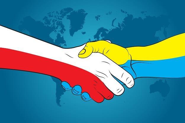 Polska i Ukraina na czele blokady Nord Stream 2 /©123RF/PICSEL