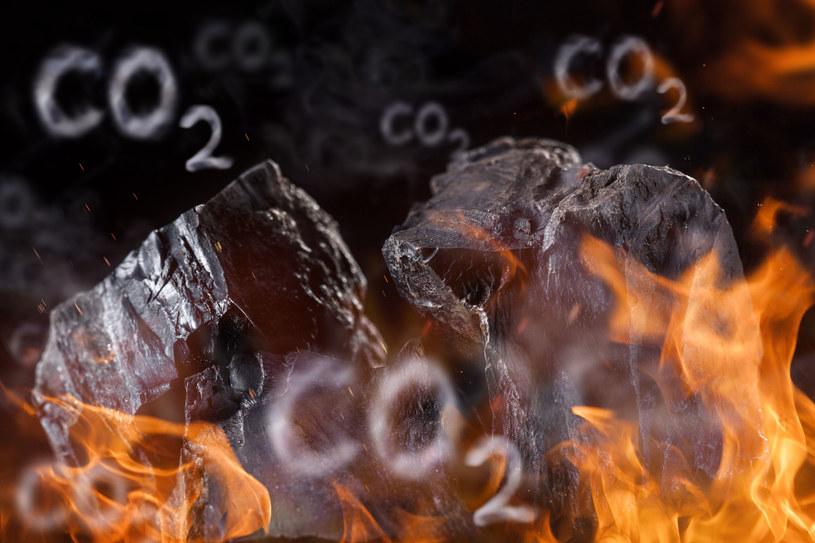Polska interweniuje w Brukseli w sprawie cen CO2 /123RF/PICSEL