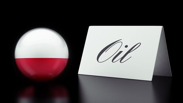 Polska kupuje ropę od terrorystów? /©123RF/PICSEL