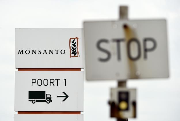 Polska ma dziesiątki produktów zawierający rakotwórczy środek /AFP