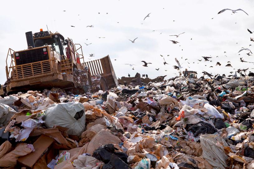 Polska ma dziś problem z odpadami, z nadwyżką kalorycznej frakcji energetycznej, która nie nadaje się do recyklingu. /123RF/PICSEL