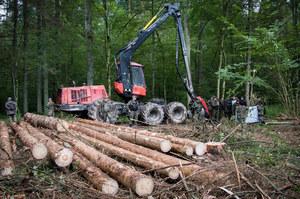 Polska: Materiały KE bez wartości dowodowej