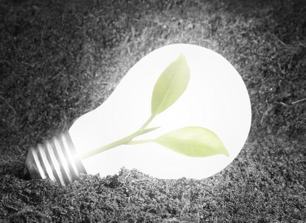 Polska mogłaby zaoszczędzić 12,8 mld zł dzięki upowszechnieniu oświetlenia LED /Newseria Biznes
