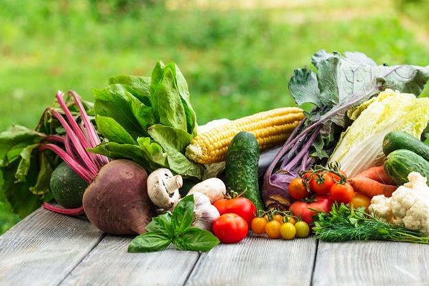 Polska może być spichlerzem żywności eko dla Europy /©123RF/PICSEL