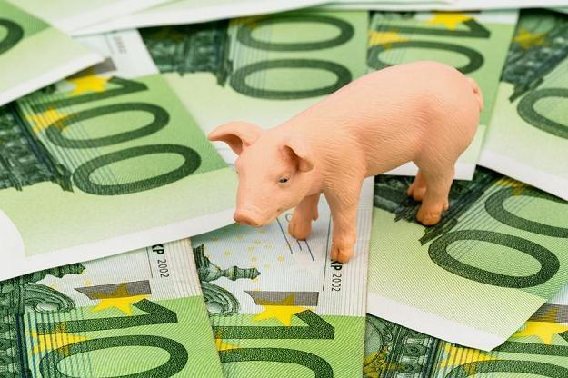 Polska może liczyć na 3,5 miliona euro z brukselskiej kasy /©123RF/PICSEL
