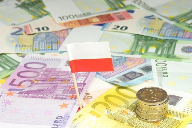 Polska może liczyć na mniej pieniędzy niż w obecnej perspektywie budżetowej /©123RF/PICSEL
