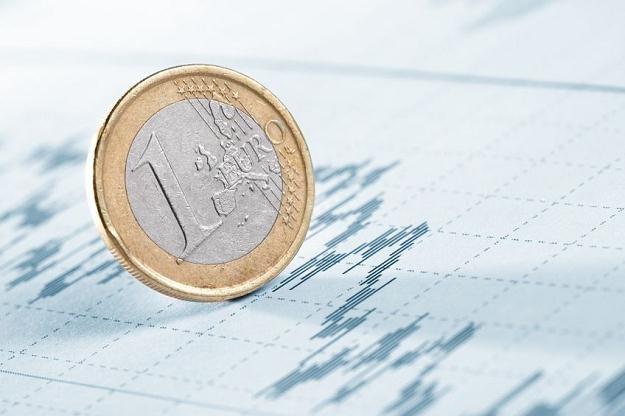 Polska może wejść do strefy euro w 2021-2022 roku /©123RF/PICSEL