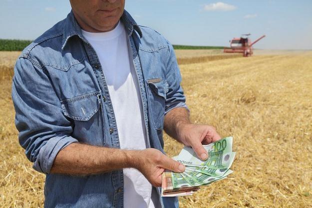 Polska musi zwrócić 30 milionów euro do unijnego budżetu /©123RF/PICSEL
