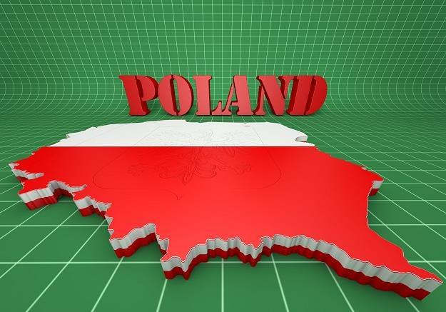 Polska nadal jest wśród europejskich liderów wzrostu /©123RF/PICSEL