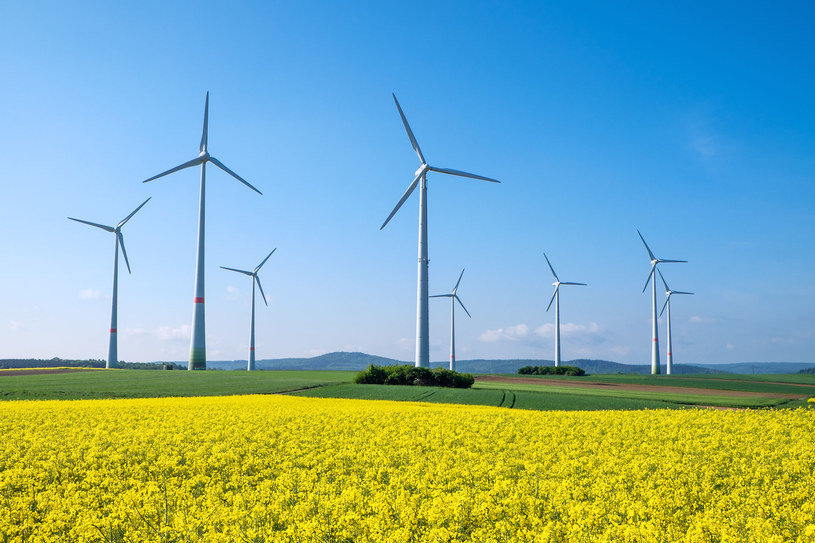 Polska największą wiatrakową budową środkowej Europy /123RF/PICSEL