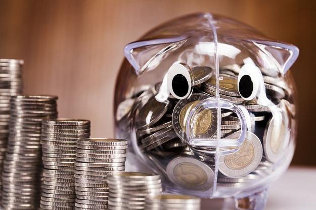 Polska od lat nie waloryzuje kwoty wolnej od podatku /©123RF/PICSEL