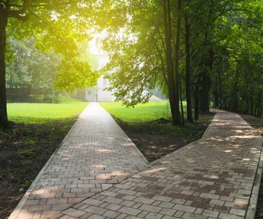 Polska ostro zbacza z zielonej ścieżki
