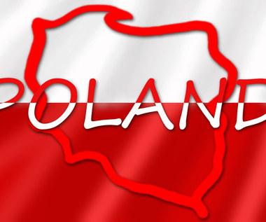 Polska pójdzie inną drogą wychodzenia z kryzysu!