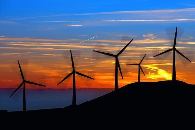 Polska powinna rozwijać energetykę wiatrową. Co na to górnicy? /©123RF/PICSEL