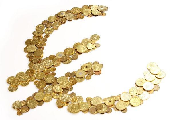 Polska raczej nie przyjmie euro przez najbliższe 10 lat /©123RF/PICSEL