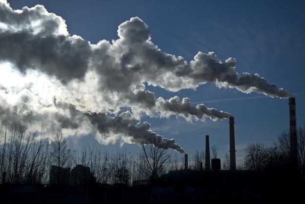 Polska redukuje swoje emisje CO2 /©123RF/PICSEL