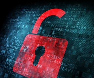 Polska rusza do walki z przestępcami w sieci
