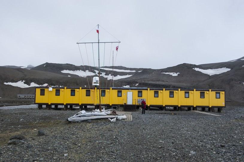 Polska Stacja Badawcza na Antarktyce została uruchomiona w 1977 roku. Do dzisiaj pojechało tam ponad 40 wypraw /Michael Runker /East News