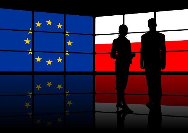 Polska stała się znaczącym graczem w Unii Europejskiej /©123RF/PICSEL
