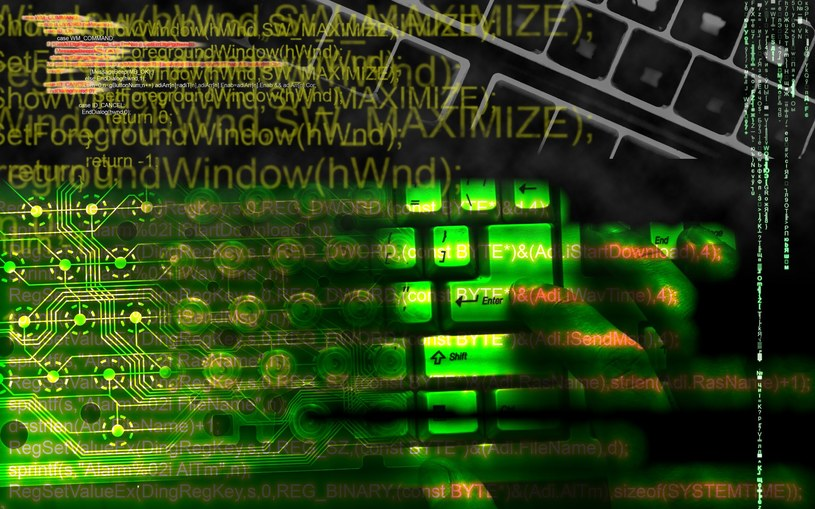 Polska to dziki kraj... przynajmniej w cyberprzestrzeni /123RF/PICSEL