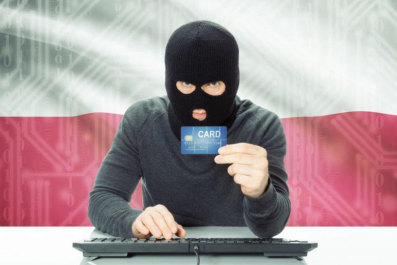 Polska to jeden z 20 najbezpieczniejszych krajów świata pod względem bezpieczeństwa cybernetycznego /123RF/PICSEL