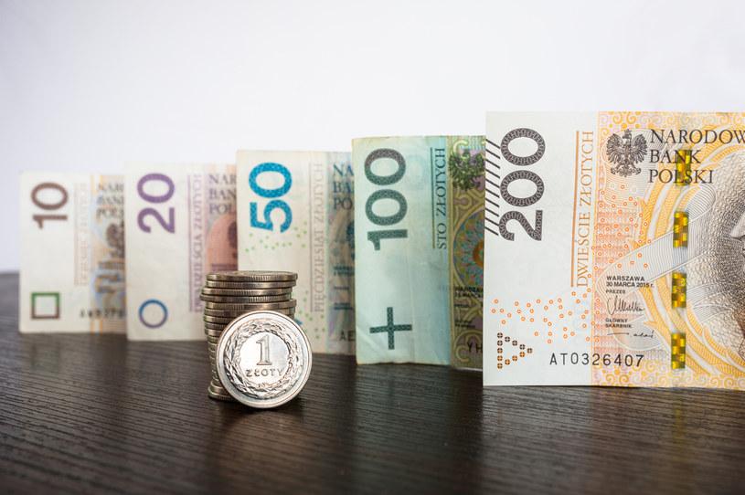 Polska waluta jest pod wpływem czynników globalnych /123RF/PICSEL