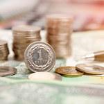 Polska waluta już dawno nie była tak słaba. Co gnębi złotego?