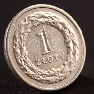 Polska waluta umocniła się w kierunku 3,90 za euro /© Bauer