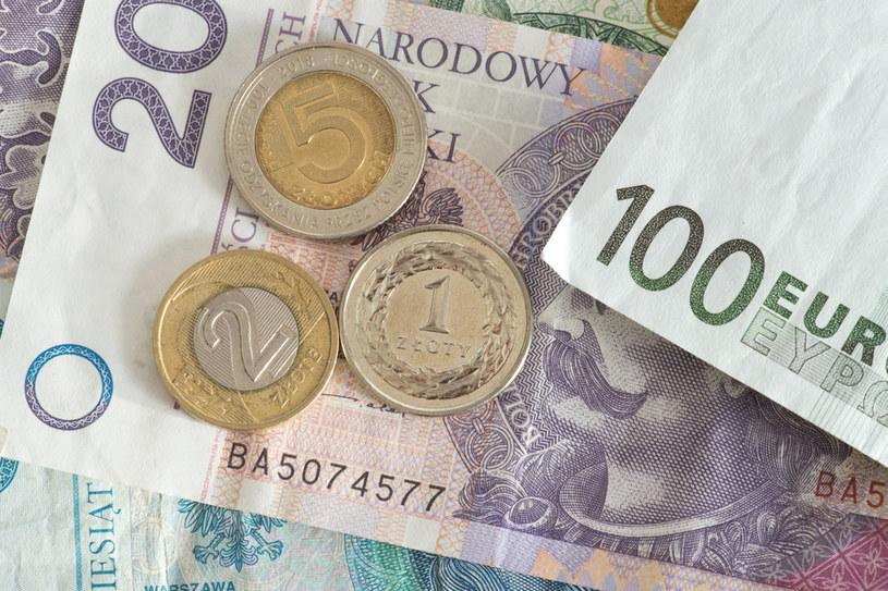 Polska waluta w najbliższych dniach pozostanie słaba? /123RF/PICSEL