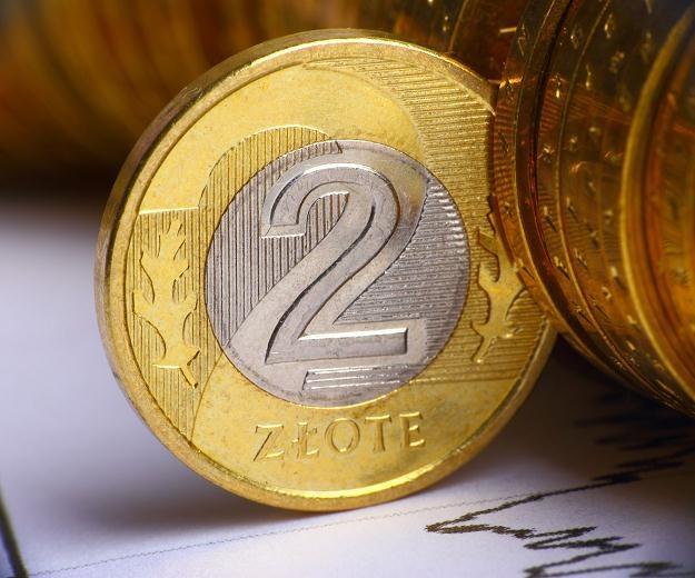 Polska waluta w poniedziałek straciła na wartości, po czym odrobiła straty /©123RF/PICSEL