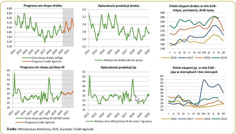 Polska ważnym producentem drobiu w UE /Informacja prasowa