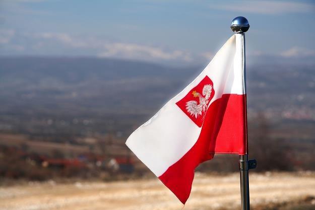 Polska wciąż jest atrakcyjna dla zagranicznych inwestorów /©123RF/PICSEL