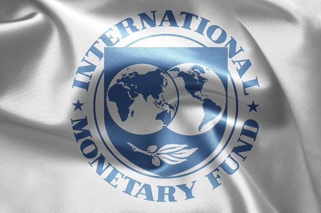 Polska wnioskuje o linię kredytową w MFW (International Monetary Fund) /©123RF/PICSEL