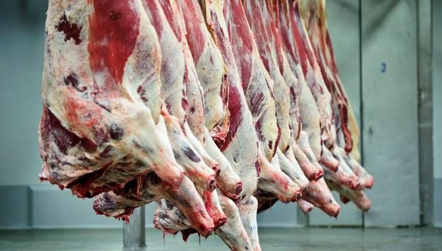 Polska wołowina z salmonellą. Czechy wprowadzają specjalne kontrole