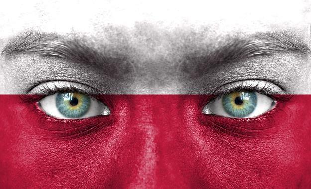 Polska z trudem zdobywa dalekie rynki /©123RF/PICSEL