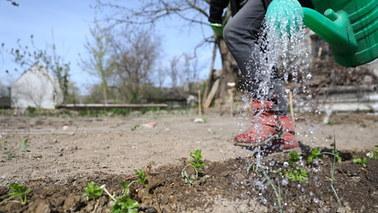 """Polska zatrzymuje za mało wody. """"To może być susza stulecia"""""""