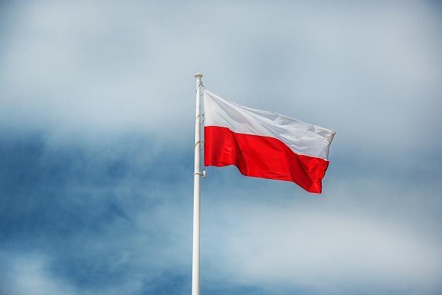Polska znajduje się w gronie 25 największych eksporterów na świecie /©123RF/PICSEL