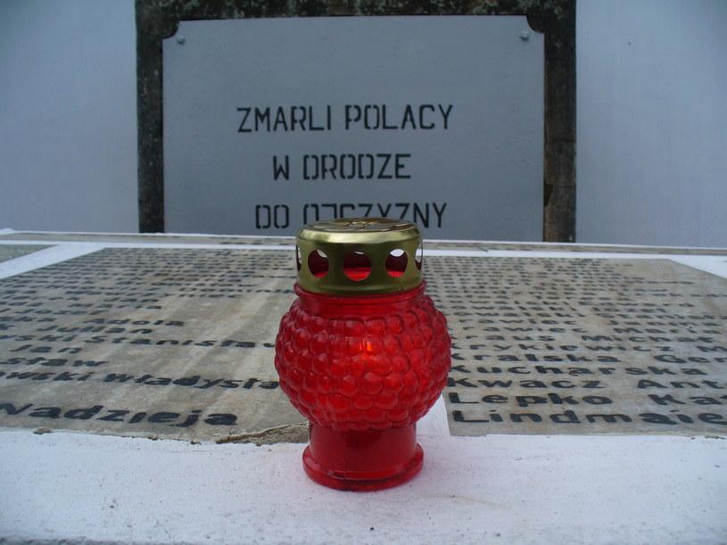 Polski cmentarz w Koji, prace misji, 2009 r. /Centrum Dokumentacji Zsyłek, Wypędzeń i Przesiedleń Uniwersytetu Pedagogicznego /