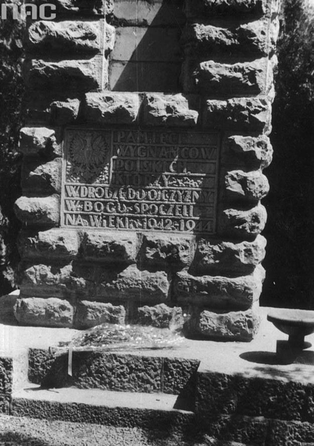 Polski cmentarz w Teheranie /Z archiwum Narodowego Archiwum Cyfrowego