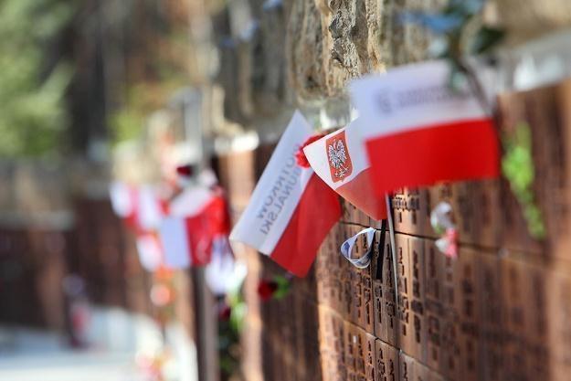 Polski cmentarz wojenny w Katyniu / fot. J. Kucharzyk /East News