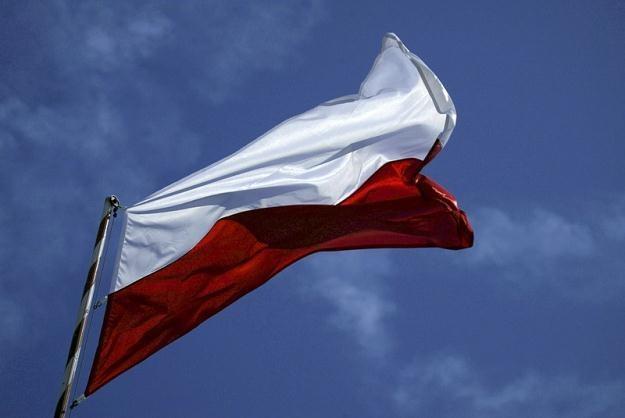 Polski dług publiczny wyniósł w 2010 roku 55 proc. PKB /fot. Adam Jankowski /Reporter