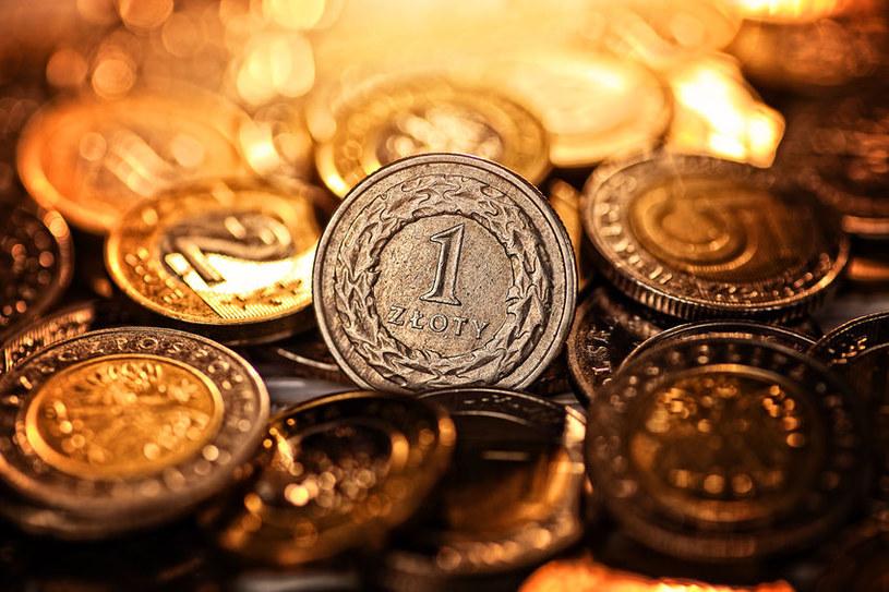 """Polski złoty pozostaje """"walutą peryferyjną"""", narażoną na gwałtowne zmiany kursu /123RF/PICSEL"""
