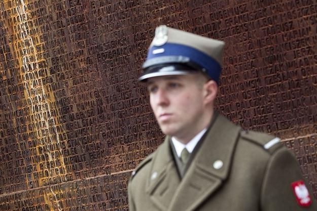 Polski żołnierz przed tablicą pamiątkową w lesie katyńskim /Reporter